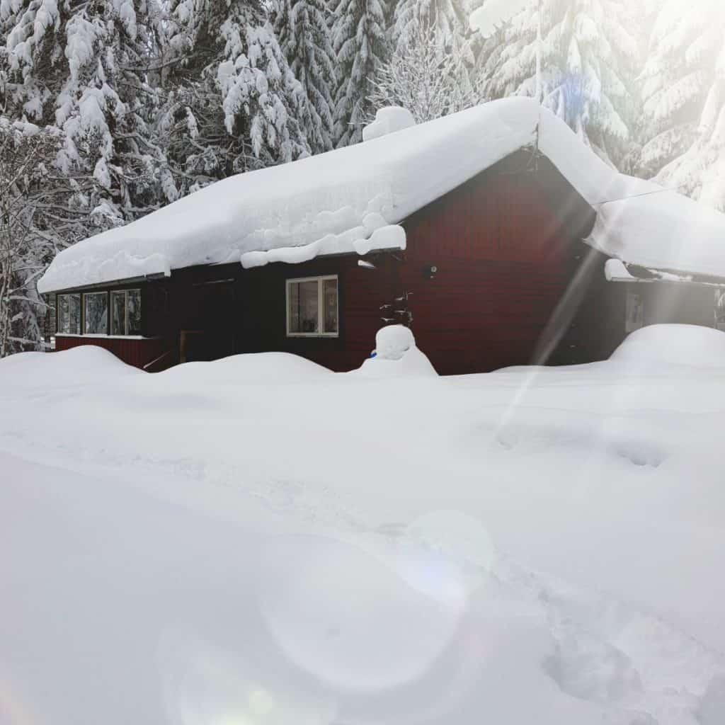 Op Zoek Naar Zweedse Sneeuw